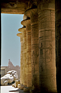 Columns in the Ramesseum