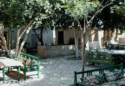 el-Marsam Hotel garden