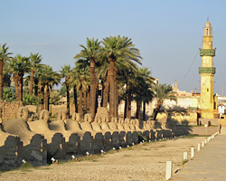 Avenue of Sphinxes at Luxor