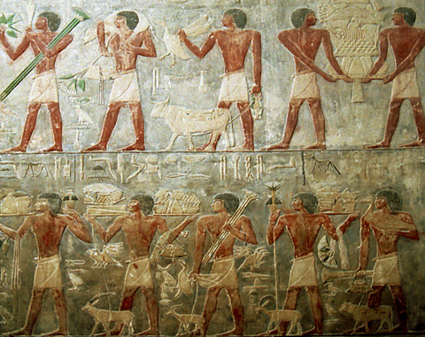 Offering bringers in Ptahhotep's tomb