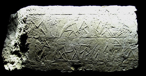 Reliefs from the Unas Causeway