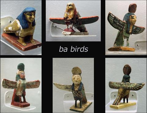 ba-birds
