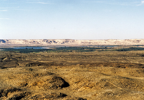 View over Bahariya looking south