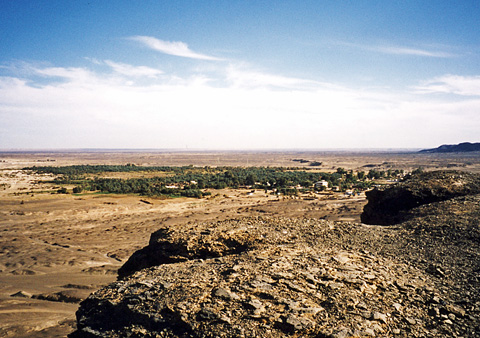 View over Bahariya Oasis
