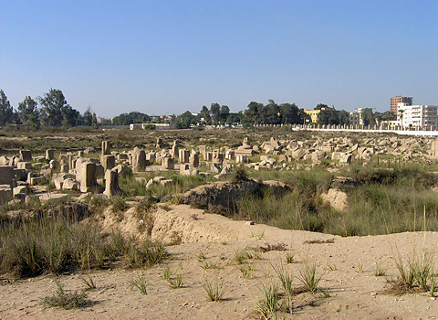 The temple site at Bubastis