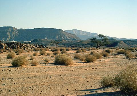 Wadi Mukattab
